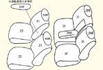 1列目全席分・2列目全席分・枕カバー4個・1列目用肘掛けカバー1個(モデルにより不要)・2列目用肘掛けカバー1個 セット内容イメージ図