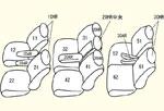GP3 7人乗り用 セット内容イメージ図
