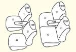 運転席肘掛け有り/2列目肘掛け有り用 セット内容イメージ図