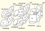 30系2.5Z(7人)用 セット内容イメージ図